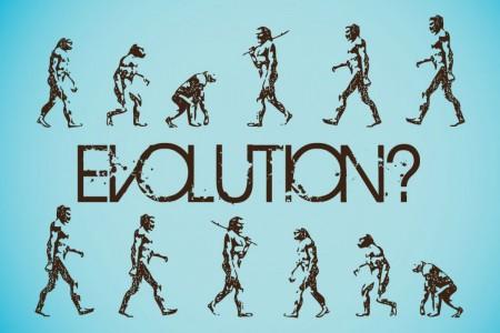 evolution-graphics1